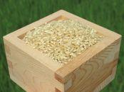 滋賀県産みずかがみ 玄米5kg