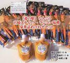 マンゴー味噌・宮崎スティック 豪華詰め合わせセット