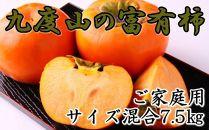 ■【厳選・産直】和歌山県産の富有柿約7.5kgご家庭用(サイズ混合)