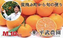 【数量限定】蛍飛ぶ町から旬の便り 有田みかん(10kgMサイズ) 平武農園