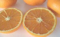 蛍飛ぶ町から旬の便り きよみオレンジ5kg 平武農園