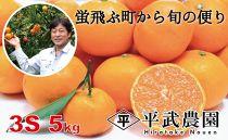 蛍飛ぶ町から旬の便り 有田みかん(5kg3Sサイズ) 平武農園