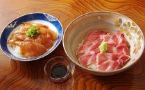 HN041 ジオ丼とマグロ丼セット