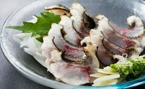 HN046 室戸の旬のタタキセット【チリ酢と薬味付き】