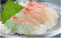 【毎月中旬発送】【刺身用】佐伯産鯛約300gと花笑み純米大吟醸酒のセット
