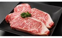 【毎月中旬発送】おおいた和牛A4ランク以上サーロインステーキ200g×2枚と大分むぎ焼酎「ぶんご太郎25度」720ml徳利入りのセット