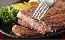 【毎月中旬発送】おおいた和牛A4ランク以上サーロインステーキ200g×4枚と大分むぎ焼酎「ぶんご太郎25度」720ml徳利入りのセット