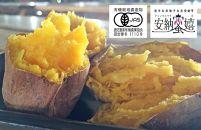 ★受付終了2019.10.18★種子島産・有機JAS安納芋『安納蜜嬉』14㎏