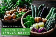 農家から直送!もりだくさん野菜セット