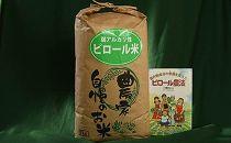 ピロール農法で作る弱アルカリ性のコシヒカリ 10kg
