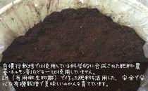 和歌山県産オーガニック温州みかん3kg