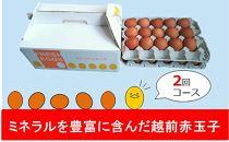 【2週間ごとに届く新鮮卵!!】ミネラルを豊富に含んだ越前赤玉子27個入り+卵割れ補償3個(計30個) ×2回