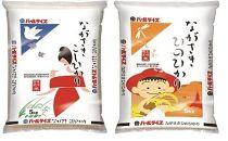 【AA013-NT】長崎県産米 ながさきこしひかり、ながさきひのひかり 各5kgセット