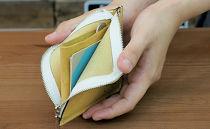 プチウォレット【イエロー】お札・小銭・カードが収納できる小さなお財布!