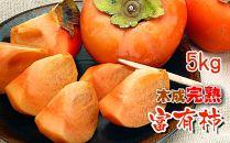一度は食べたい香川産の完熟富有柿の詰め合わせ5kg