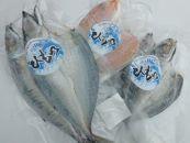紀州地魚干物セット(3~5パック)