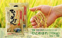 【令和元年産】宮城・栗原の阿部さんたちが作ったひとめぼれ 10kg