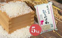 【新米】【令和2年産】宮城県栗原産「ひとめぼれ」一等米限定 5kg