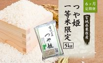【6ヶ月定期便】宮城県栗原産「つや姫」一等米限定 毎月5kg×6ヶ月