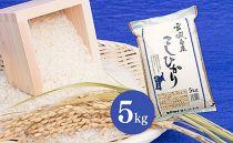 【令和元年産】宮城県栗原産 特別栽培米「コシヒカリ」5kg