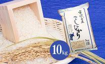 【令和元年産】宮城県栗原産 特別栽培米「コシヒカリ」10kg
