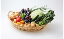 宗像旬のお任せ(12~14品)セット(野菜・果物)