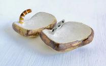 厚切り食パンの箸置きチンアナゴと一緒に×2