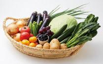 【定期便】宗像旬の野菜・果物セット×12ヶ月