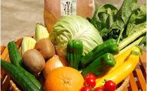 【定期便】宗像旬の野菜・果物・米セット×12ヶ月