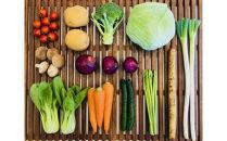 【定期便】【偶数月】宗像旬の野菜お任せセット×6ヶ月