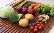 【定期便】宗像旬の野菜(11~12品)お任せセット
