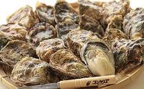 厚岸産殻付き牡蠣『マルえもんLサイズ20個セット』