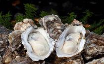 【ポイント交換専用】厚岸で1番人気の牡蠣「マルえもん10個セット」(2~3人用)