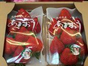 MW02-11福岡県産「あまおう」(苺)