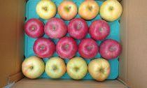 【先行受付】8月下旬からお届け「リンゴのふくさわ」旬のリンゴ12~18玉詰め合わせ