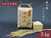 2019年産 竜の舞コシヒカリ(白米)5Kg
