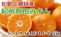 [厳選]紀州有田みかん約5kg(S~Lサイズおまかせ)