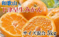 【産直】下津の早生みかん約5kg(サイズ混合)