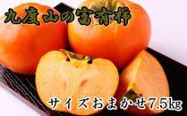 【2020年10月下旬発送開始】[柿の名産地]九度山の富有柿約7.5kgサイズおまかせ