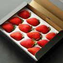 【12/15より受付】瑞の香いちご330g(年中栽培の中から最も品質の良い4・5月発送)