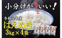 令和元年産米「酒田の米農家から直送!」はえぬき12kgSI<庄内い~ものや>