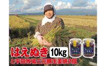 令和元年産米「はえぬき<精米>」10kgと平田牧場三元豚「ご飯にかける生姜焼き」2個SI<庄内い~ものや>