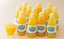 丸しぼり果汁12本詰合せ