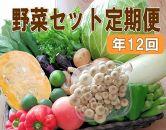 【毎月お届け全12回】旬の新鮮野菜セットA(たっぷり15品以上)