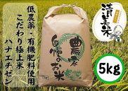 【低農薬】こだわり極上米『ハナエチゼン』5kg