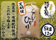 《定期便》【低農薬】『こしひかり』5kg×12ヵ月