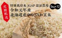 【定期配送】特別栽培米JGAP認証農場 令和元年産北海道産ゆめぴりか玄米 5kg×12回