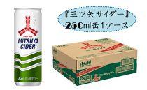 爽快感炭酸飲料『三ツ矢サイダー』250ml缶1ケース