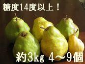 (2020年9月~配送開始)糖度14度以上の極上品 大玉西洋梨約3㎏(4~9個入)