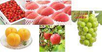 先行予約/【全5回】フルーツ定期便さくらんぼ/もも/ぶどう/りんご